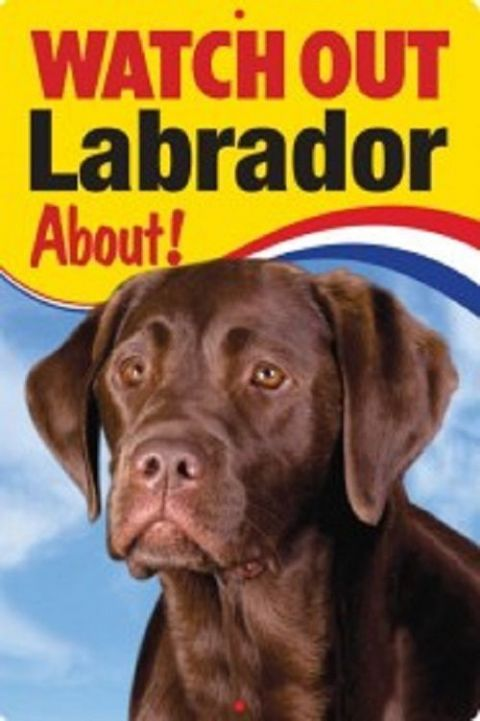 CHOCOLATE LABRADOR  3D  DOG SIGN